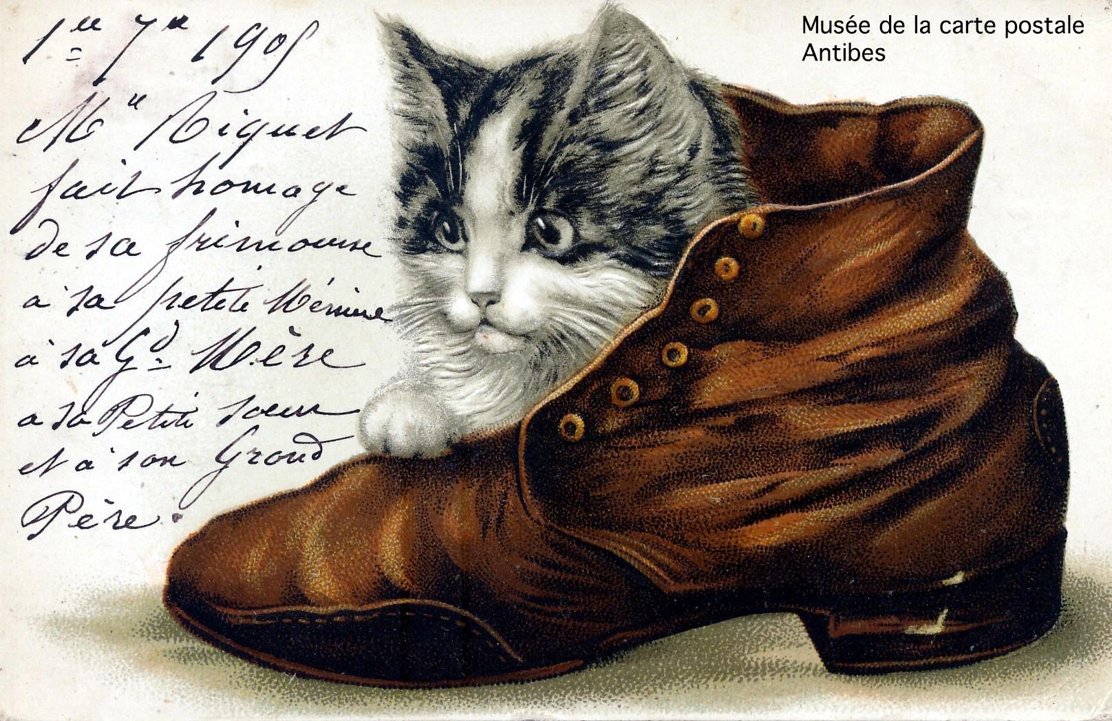 Carte postale ancienne, illustration d'un chaton dans une chaussure, issue de l'exposition temporaire du musée de la carte postale sur le thème de la chaussure.