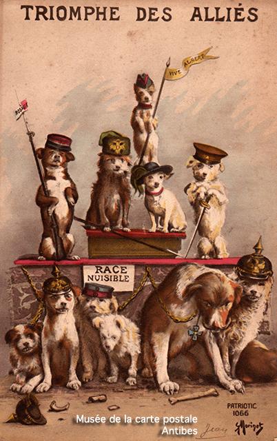 """Carte postale ancienne représentant le """"triomphe des alliés"""" par des chiens habillés en soldats, issue de l'exposition temporaire sur les animaux humanisés, au Musée de la Carte Postale, à Antibes."""