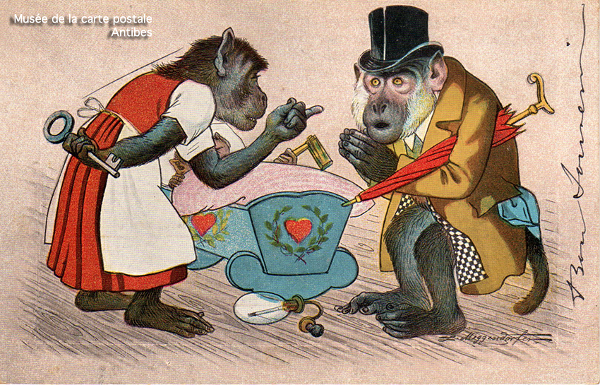 Carte postale ancienne représentant un couple de singes habillés, issue de l'exposition temporaire sur les animaux humanisés, au Musée de la Carte Postale, à Antibes.