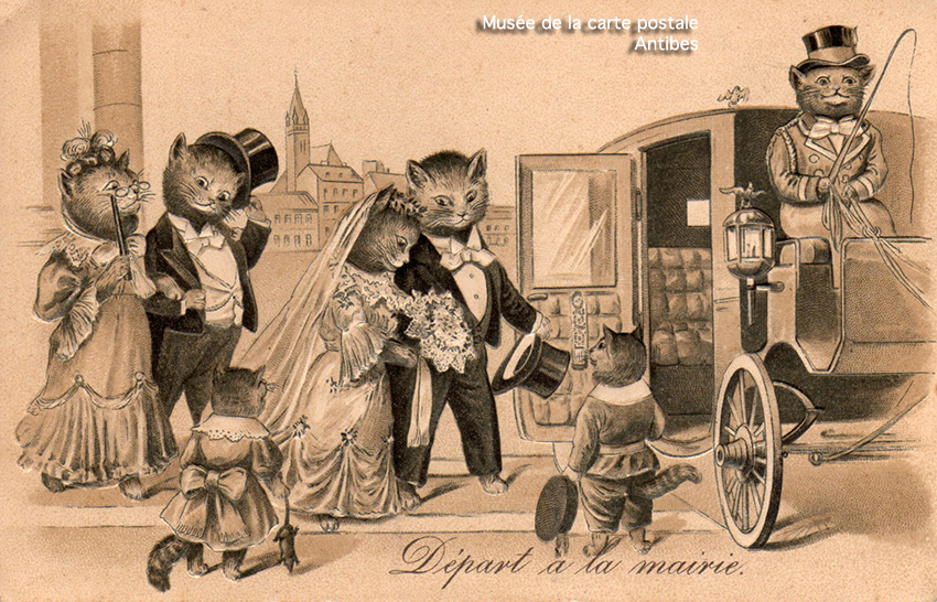 Carte postale ancienne représentant le cortège de mariage d'une famille de chats habillés comme des humains, issue de l'exposition temporaire sur les animaux humanisés, au Musée de la Carte Postale, à Antibes.