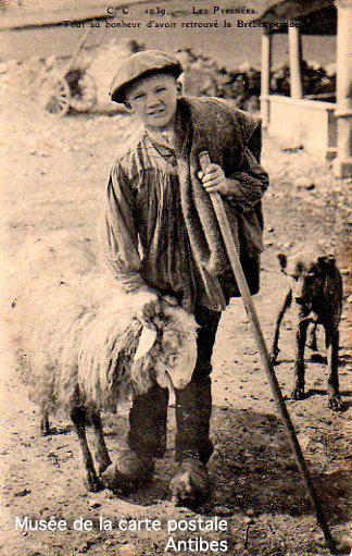 Carte postale ancienne, représentant un enfant berger et sa brebis dans les Pyrénées.