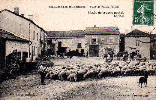 Carte postale ancienne, représentant des bergers et moutons à Colombey les deux églises.