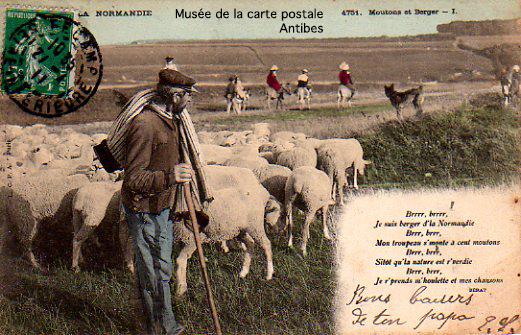 Carte postale ancienne, représentant des bergers et moutons en Normandie.