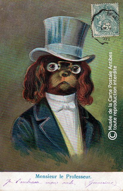 Carte postale ancienne représentant un chien habillé comme un professeur, issue de l'exposition temporaire sur les animaux humanisés, au Musée de la Carte Postale, à Antibes.