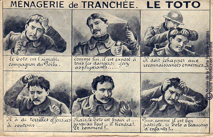 """Carte postale illustrée représentant le toto, ou les poux chez les soldats, issue de l'exposition temporaire """"l'humour chez les poilus"""" au Musée de la Carte Postale, à Antibes."""