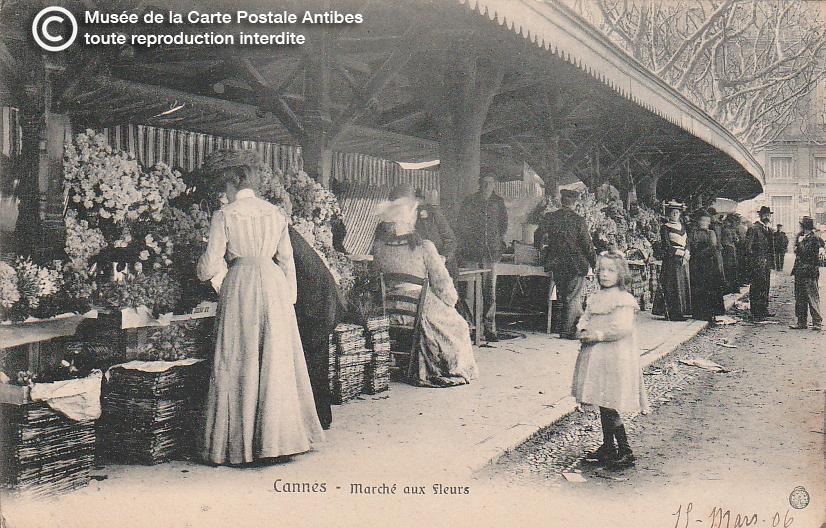 Carte postale ancienne représentant le marché aux fleurs de Cannes, issue des réserve du musée de la carte postale, à Antibes.