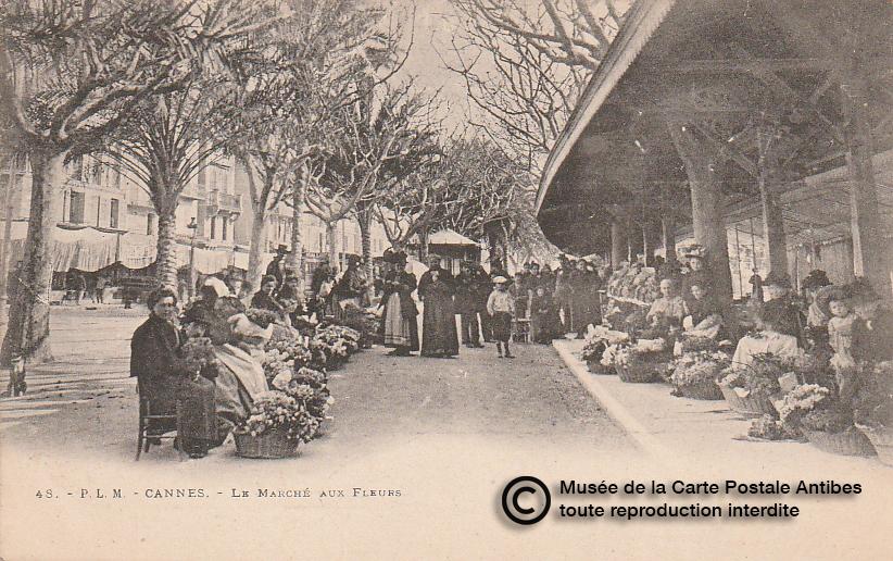 Carte postale ancienne représentant le marché aux fleurs à Cannes, issue des réserve du musée de la carte postale, à Antibes.