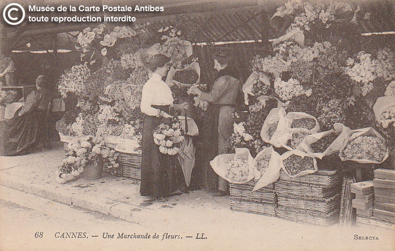 Carte postale ancienne représentant une marchande sur le marché aux fleurs de Cannes, issue des réserve du musée de la carte postale, à Antibes.