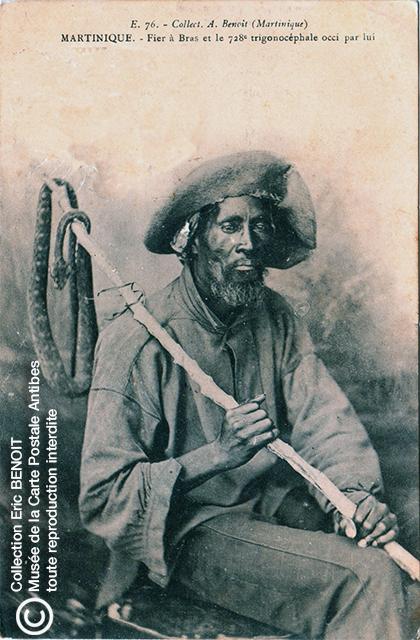 Carte postale (photo d'Armand BENOIT-JEANNETTE) représentant un fier à bras et le 728ème trigonocéphale occi par lui, en Martinique.