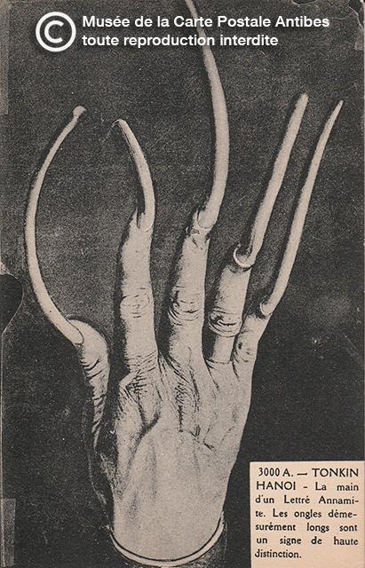 Carte postale représentant une main aux ongles longs à Tonkin, Hanoi.